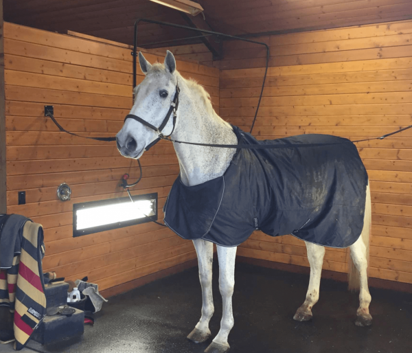 horse rubber mats for wash bays