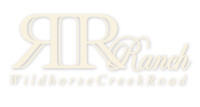 R&R Ranch Miniature Horses | Chesterfield, MO