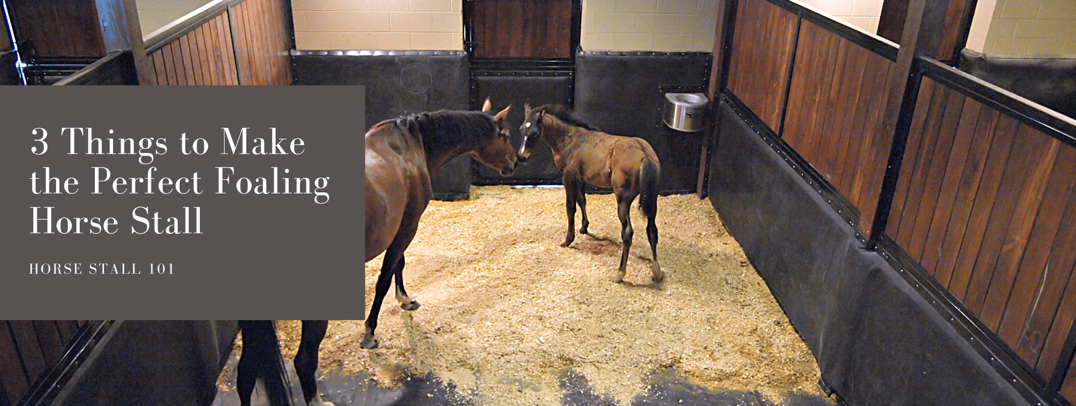 3 Considerations for the Perfect Foaling Horse Stall